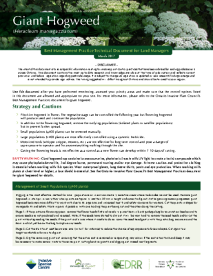 Giant Hogweed Technical Bulletin