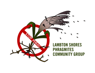 Lambton Shores Phragmites Community Group