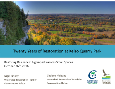 Twenty Years of Restoration at Kelso Quarry Park