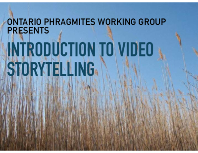 Introduction to Video Storytelling