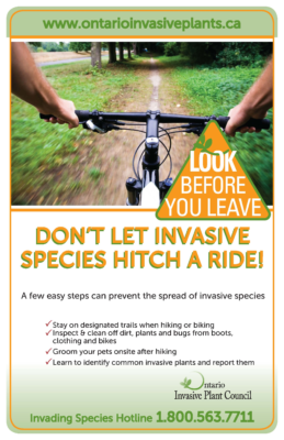 Look Before You Leave – Bikers