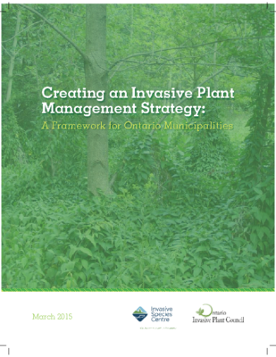 Invasive Plant Management Strategy Framework