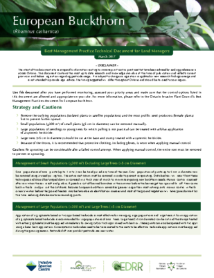 Buckthorn Technical Bulletin