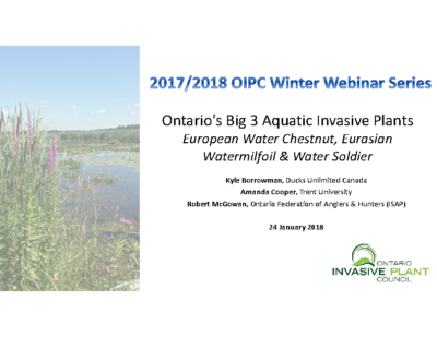 Management Options for Control of Ontario's Big 3 Aquatic Invasive Plants