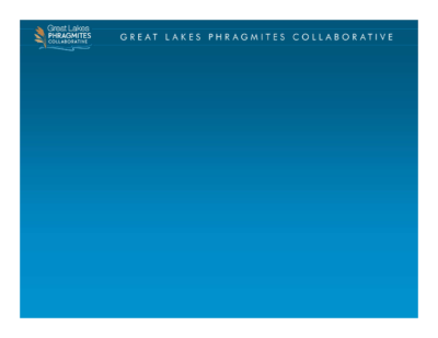 Great Lakes Phragmites Collaborative and Adaptive Management Framework