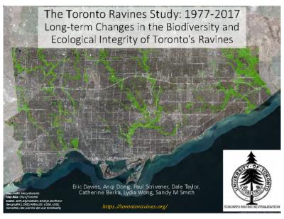 Toronto Ravine Revitalization Study 1977 – 2017
