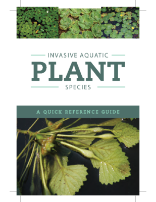 QuickReferenceGuide_AquaticPlants