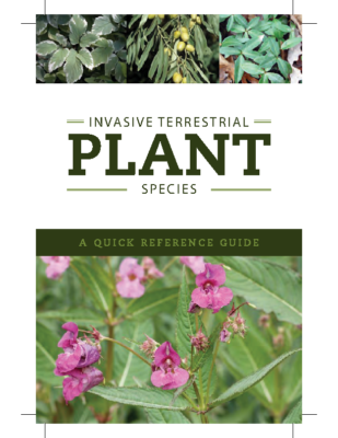 Quick Reference Guide_Terrestrial Plants