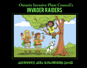 Invader Raiders Activity and Colouring Book
