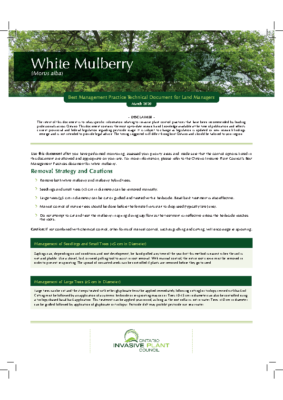 White Mulberry Technical Bulletin