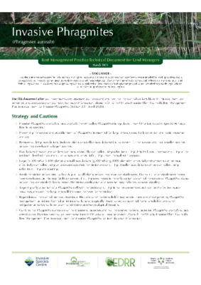 Invasive Phragmites Technical Bulletin